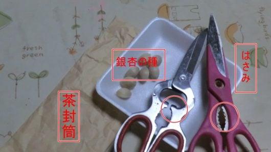 銀杏の種を割る道具