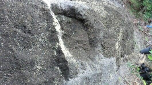植穴と土の用意