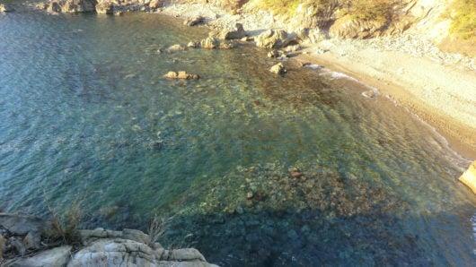 えびす洞の水の透明度