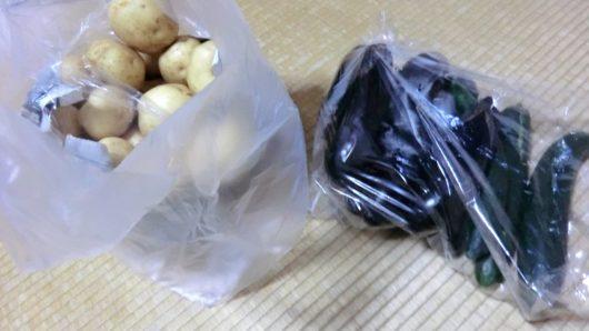 物納の野菜