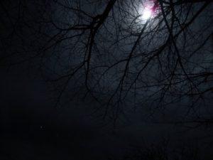 夜の暗い様子