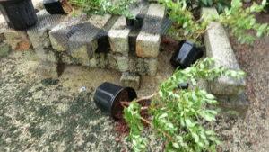 台風では大きな鉢も倒れる