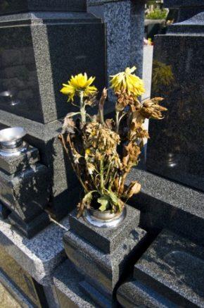 お墓の枯れた花。