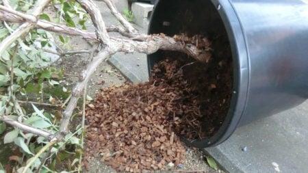 マルチング資材がこぼれた鉢。