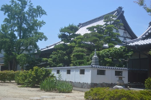 The appearance of my Enryuji Temple in the summer
