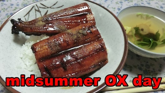 we go out as a family to eat grilled eel on a midsummer day of the ox