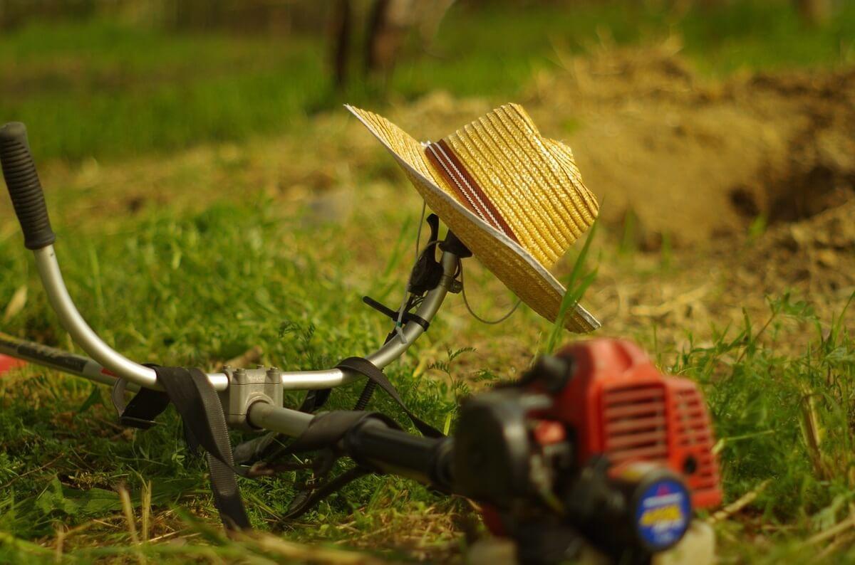 草刈り作業によるアレルギー性鼻炎の悩み